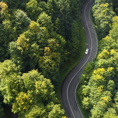 Car driving a winding road through woods